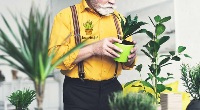 Blumentopf in der Hand